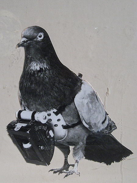 449px-Dr_Julius_Neubronner_patented_a_miniature_pigeon_camera_activated_by_a_timing_mechanism,_1903