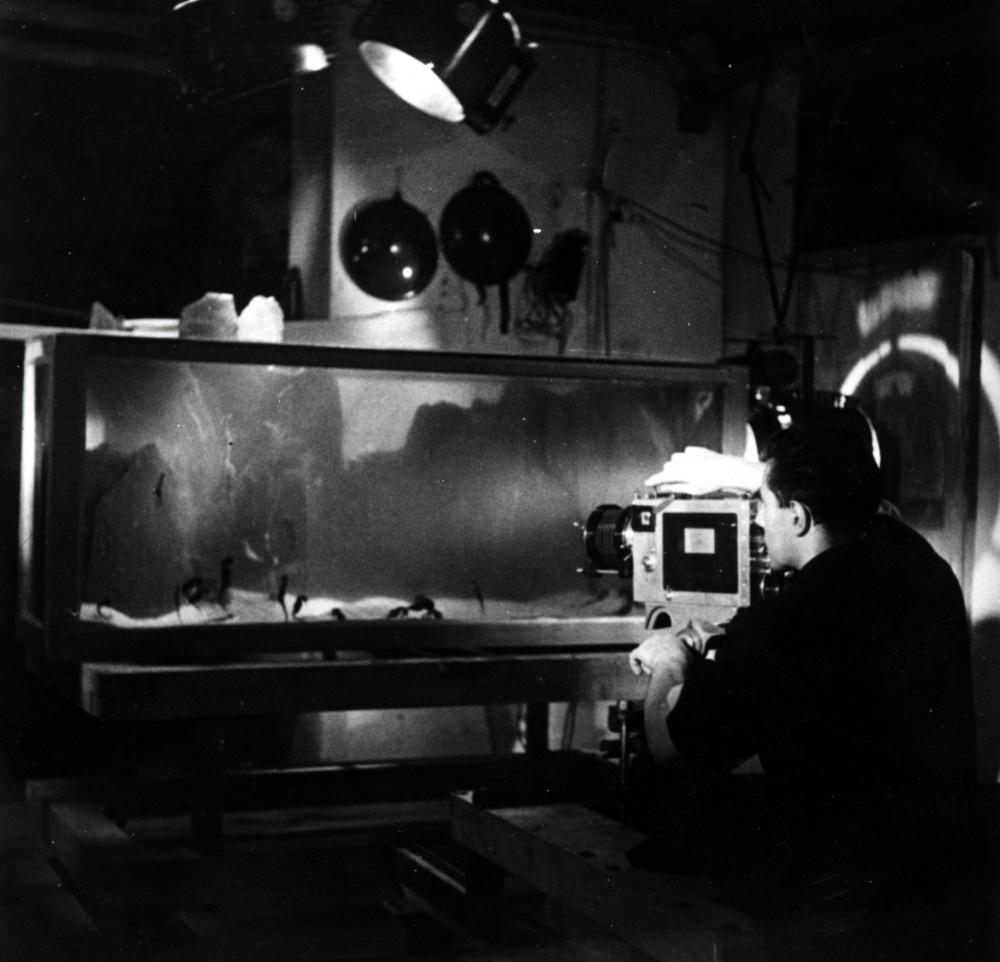 jean_painleve_filmant_lhippocampe_rue_armand_moisant_a_paris_vers_1931