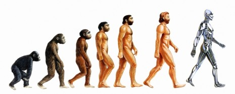 Human-evolution-465x186