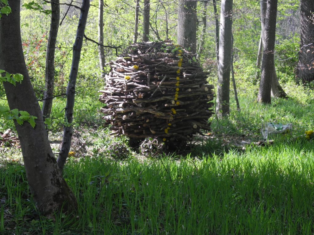 landart__wooden_ball_by_windklang-d7frvno