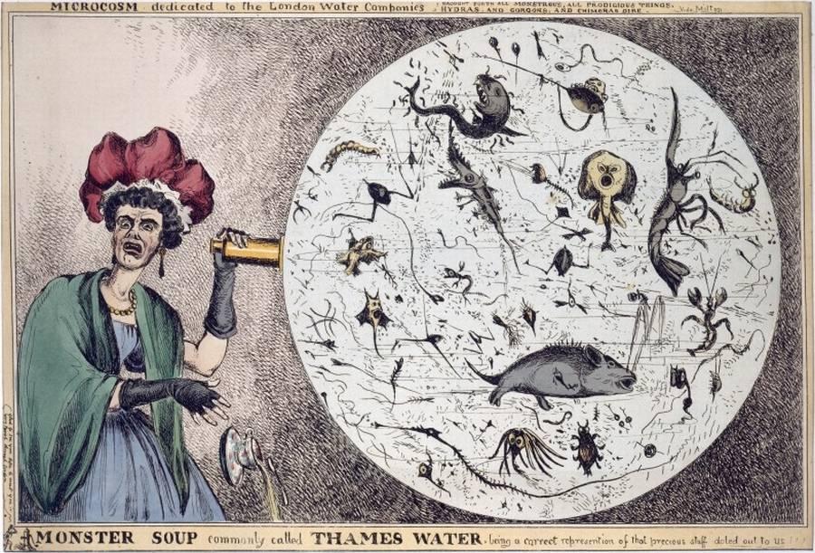 Snow-cholera-