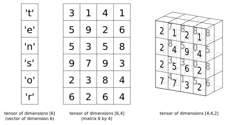 tensor-examples